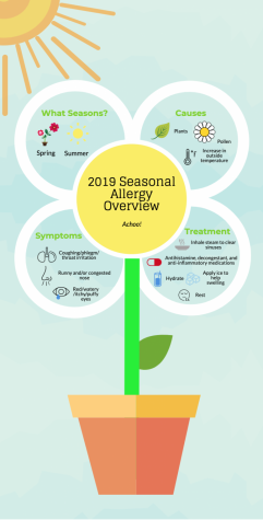2019 Seasonal Allergy Overview
