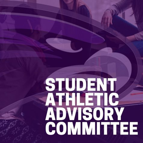 New Athletic Committee Forming at BHHS