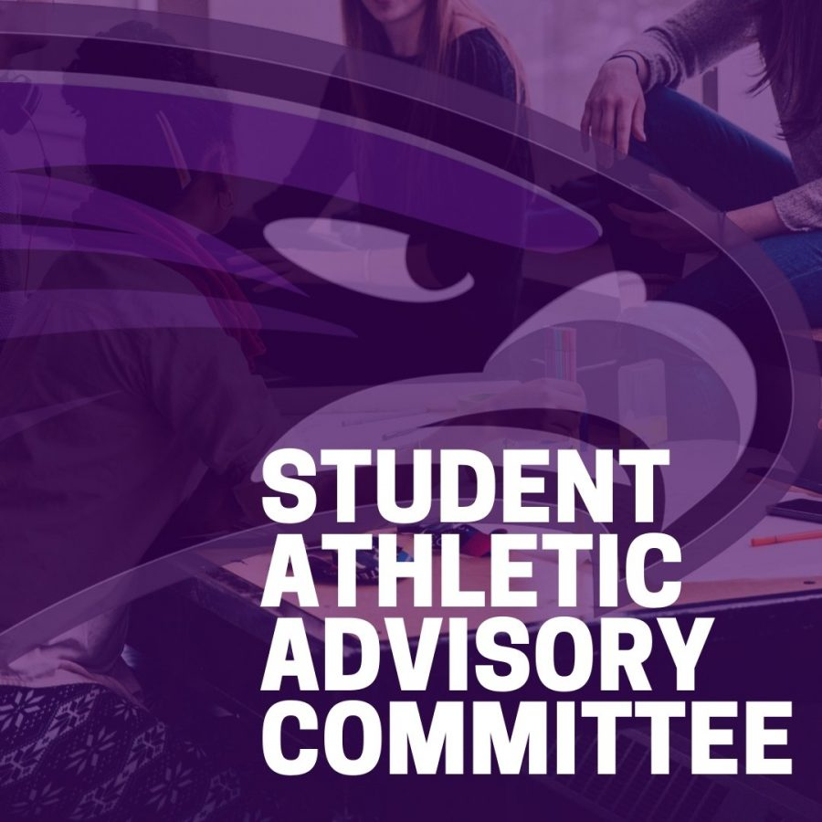 New+Athletic+Committee+Forming+at+BHHS