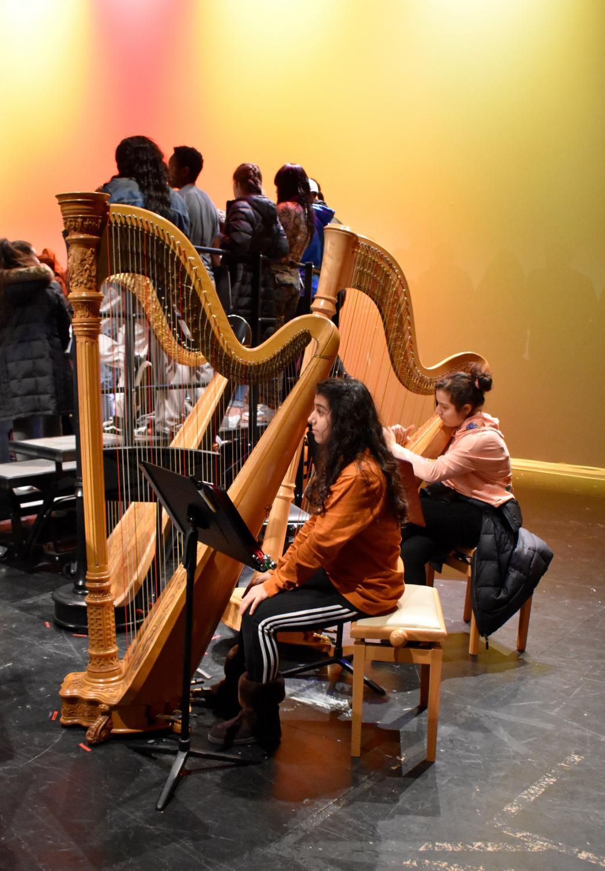 The+Ashtari+sisters+play+the+harp.+%0A