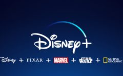 Disney expands into streaming services